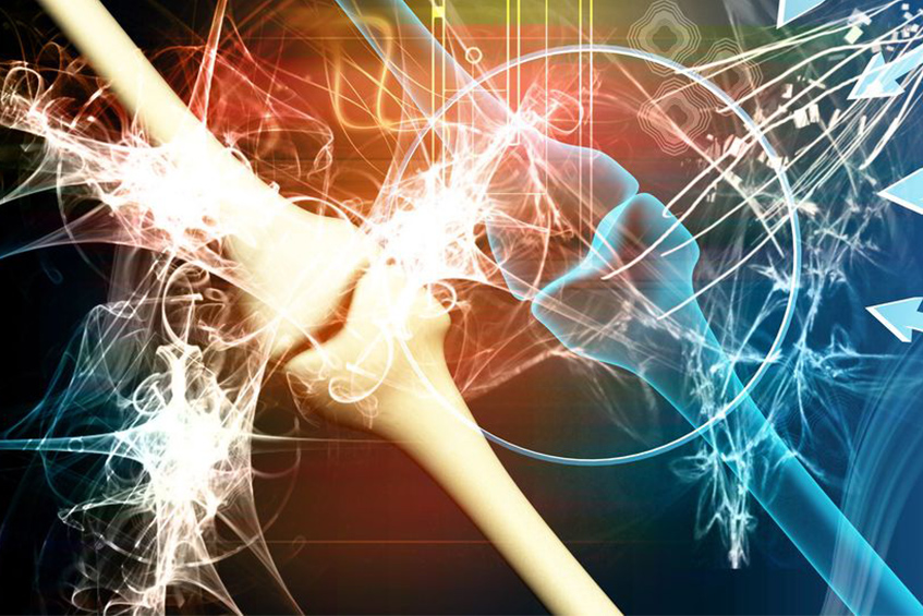 La glucosamine dans le cartilage articulaire